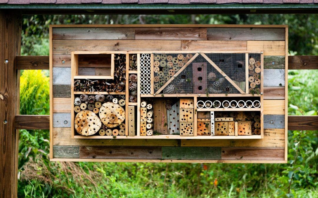 Make Your Own Bee Hotel